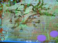 http://mahaworks.org/mahapix/files/gimgs/th-29_29_iphoneu3webdsf1696.jpg